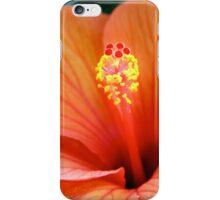 Red Hibiscus Clutch iPhone Case/Skin