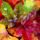 Fall Party Time by Karen Kaleta