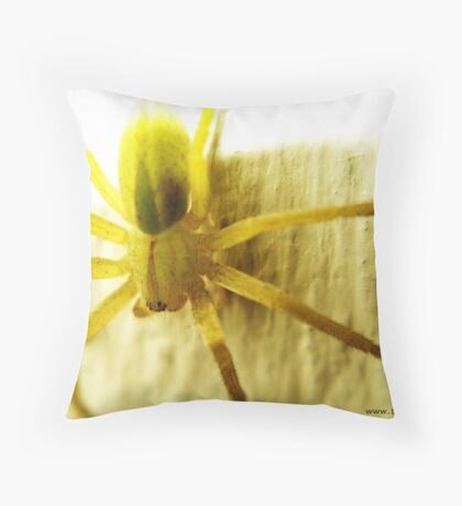 Macro Spider Throw Pillow