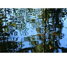 Red Pine Reflections Photographic Print