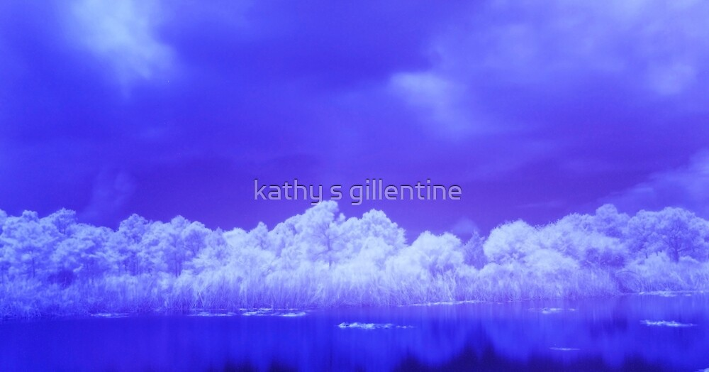 the lake by kathy s gillentine