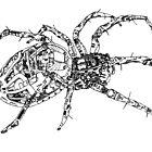 Spider! by jcwdesigns