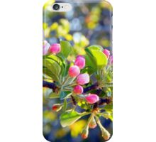 Its springtime in the Annapolis Valley iPhone Case/Skin