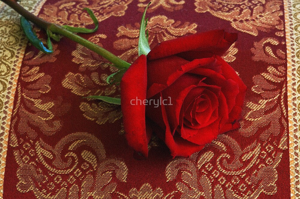Rose pillow by cherylc1