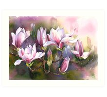Magnolia Bough Art Print