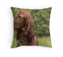 Th'bloody setter's been at it again... Throw Pillow