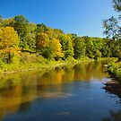 Tionesta Creek Mayburg by James Parkes