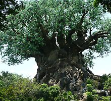 Tree of Life by issacbrock