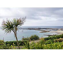 Lyme Regis Overlook - May 2015 Photographic Print