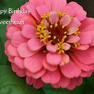 Happy Birthday Sweetheart by kkphoto1