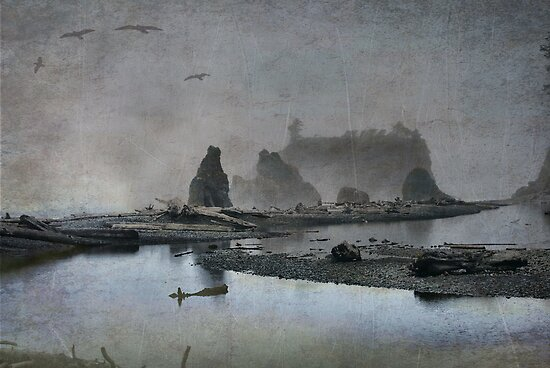 Once upon a time....Ruby Beach by Luca Renoldi
