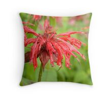 Rain2 Throw Pillow
