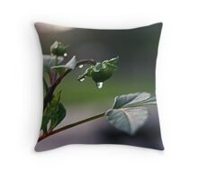 Rain5 Throw Pillow
