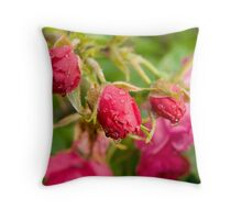 Rain13 Throw Pillow