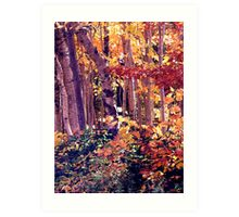 The Woods are Ablaze Art Print