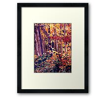 The Woods are Ablaze Framed Print