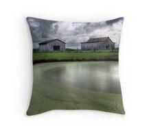 Barns and Pond Throw Pillow