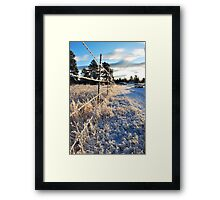 All Along the Barbedwire Framed Print