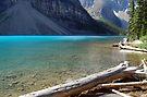Water Level - Moraine Lake Canada by Barbara Burkhardt