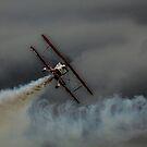Bi Plane  by yampy