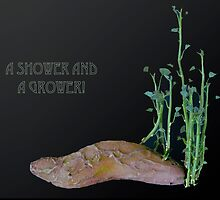 SHOWER GROWER by Thomas Barker-Detwiler