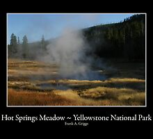 Hot Springs Meadow by FrankGImages