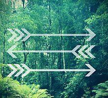 Arrow Background by Emily Lanier