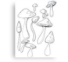 Shroom Doodles Canvas Print