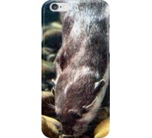 Searching for sustenance iPhone Case/Skin