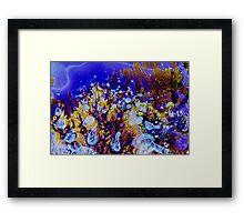 Coral Carnival Framed Print