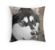 Iditarod Dog Throw Pillow