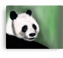 Panda Yang Guang  Metal Print