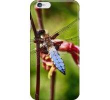 Lacey Wings iPhone Case/Skin