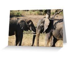 Elephant scuffle Greeting Card