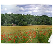 Poppy Fields of the Tweed Valley Poster