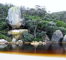 Tidal River - Whale Rock by lilleesa78