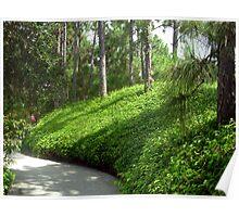 Buried Zen Path Poster