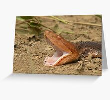Snakes Alive Greeting Card