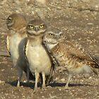 A very Close Family by ChuckCheatham