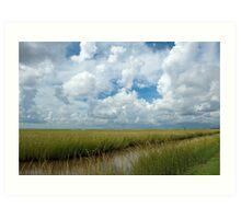 Cloudy Skies over the  Marsh Art Print