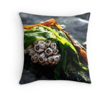 Seaweed Barnacles Throw Pillow