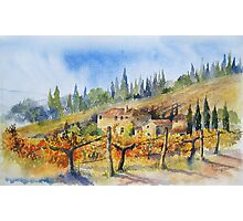 Autumn in the Vineyard Tuscany Photographic Print