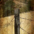 Old fence post by Nikki Collier