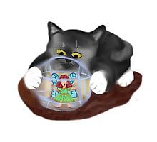 Kitty Rolls Fairy in a Hamster Ball Photographic Print