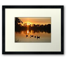 A Touch of Harmony Framed Print