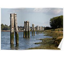 Pilings Along the Shore Poster