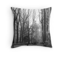 Frosty Bench Throw Pillow