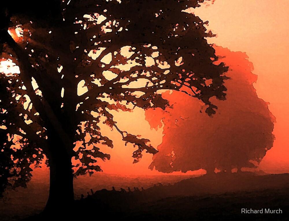 Early Dawn by Richard Murch