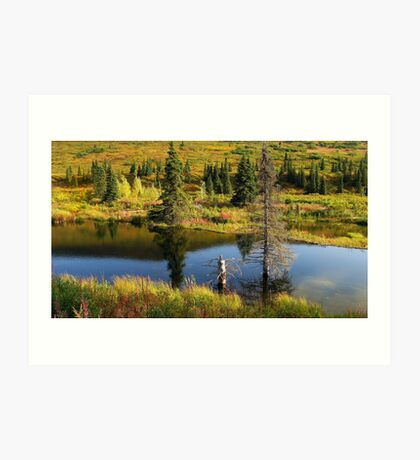 HATCHER PASS ALPINE FALL Art Print