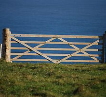 The Gate to Nowhere by Claire Elford